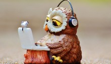 Model of owl sitting with laptop and headphones