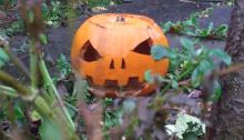 Pumpkin with carved face on patio